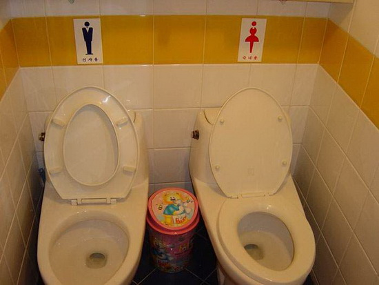 http://www.haihuoc.com/wp-content/uploads/2011/03/men-and-women-toilet-seat.jpg